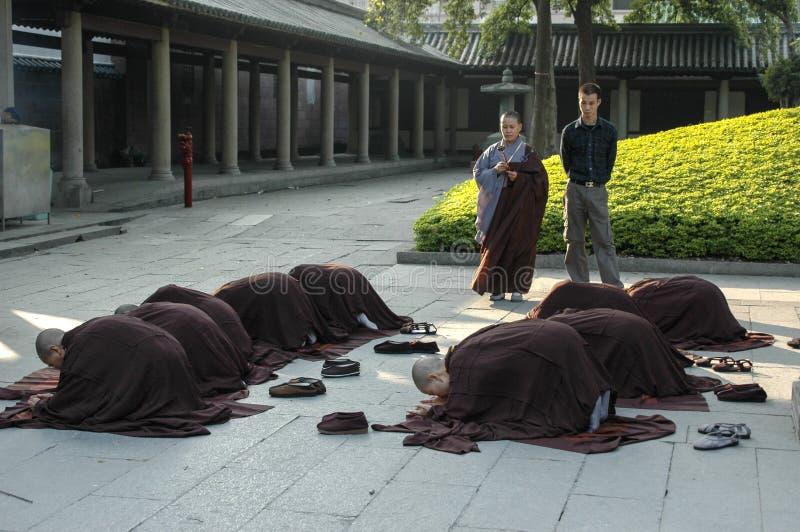 Nun in prayer royalty free stock photo