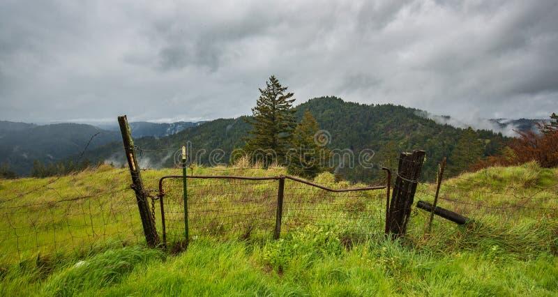 Nunca sido a um pasto da montanha alta em uma tempestade foto de stock royalty free