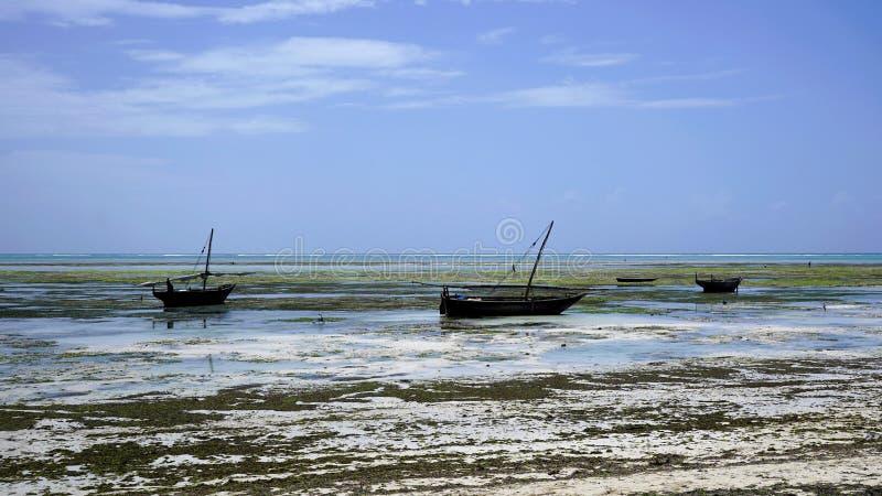 Nungwi strand, Zanzibar arkivfoton