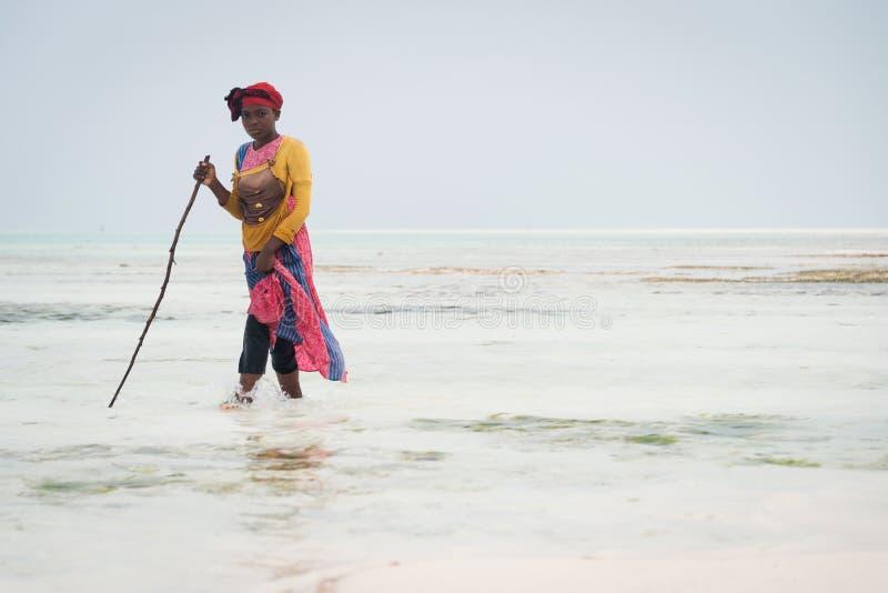 Local woman walking on the shallow waters of Indian ocean, Zanzibar. NUNGWI, ZANZIBAR - JAN 6, 2018: local woman walking on the shallow waters of Indian ocean stock images