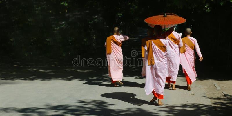 Nunna med den rosa ämbetsdräkten och paraplyet, i gatorna av Mandalay royaltyfri foto