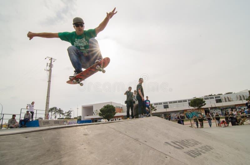 Download Nuno Alcaide editorial stock image. Image of park, rough - 24110809