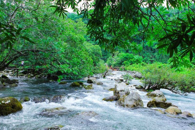 Nuoc Mooc vår - nationalpark för Mooc strömPhong Nha Ke smäll royaltyfria bilder