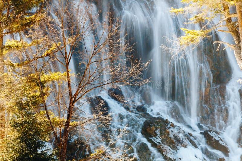 Nuorilang siklawa, Jiuzhaigou rezerwat przyrody zdjęcia royalty free