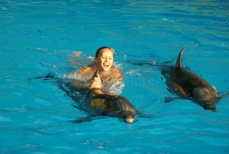 Nuotando con i delfini fotografia stock libera da diritti