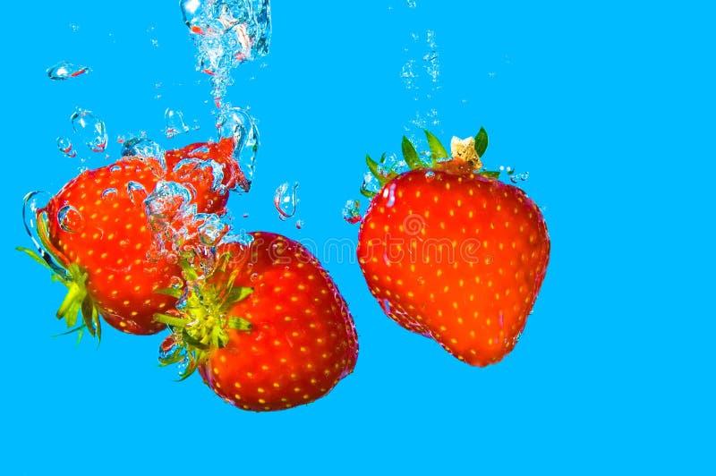 Nuotata della fragola fotografie stock