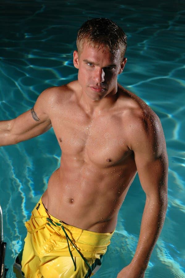 Nuotata a tarda notte immagini stock libere da diritti