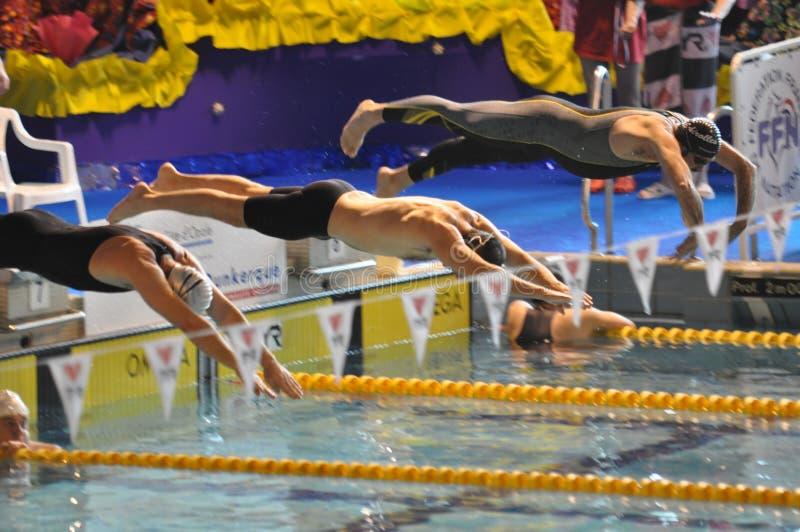 Nuotatori che si tuffano nella piscina fotografia stock libera da diritti