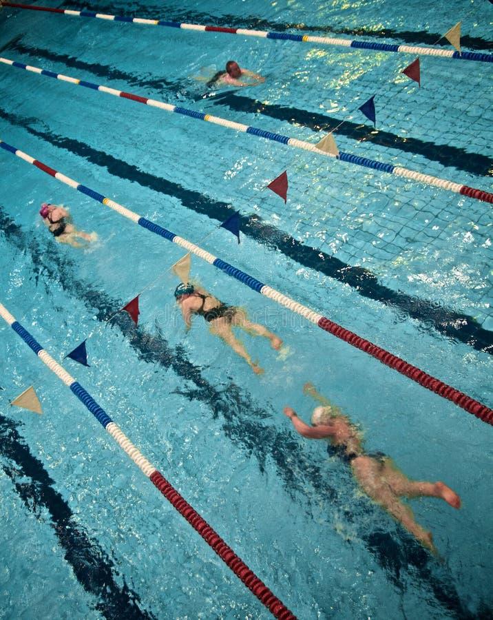 Nuotatori del raggruppamento fotografia stock libera da diritti