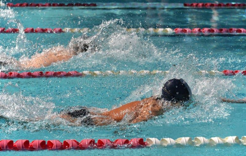 Nuotatori maschii di stile libero in una corsa vicina fotografia stock libera da diritti