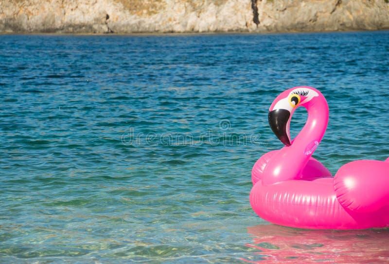 Nuoti l'anello sotto forma di un fenicottero rosa sull'acqua vicino alla spiaggia, fondo dell'acqua Anello operato di nuotata Vac immagine stock libera da diritti