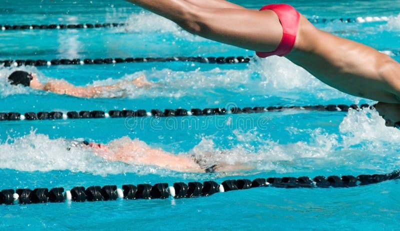 Nuoto competitivo fotografia stock
