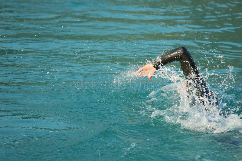 Nuoto in concorrenza fotografie stock libere da diritti
