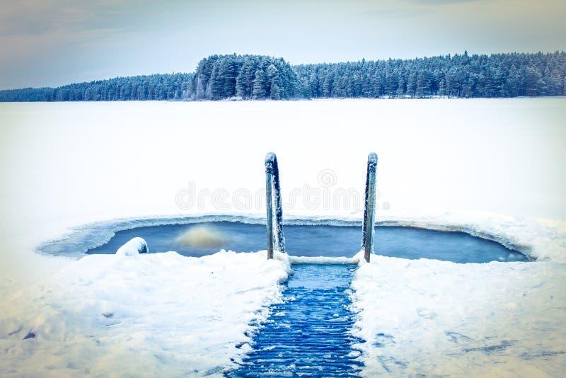 Nuoto del ghiaccio immagini stock