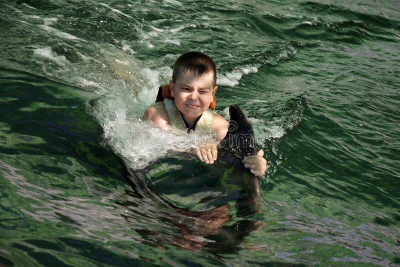 Nuoto del ragazzo con il primo piano del delfino fotografia stock