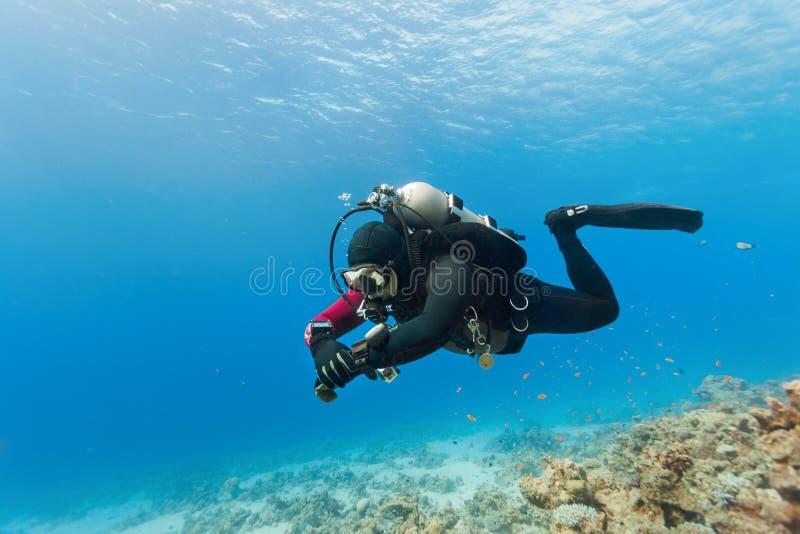 Nuoto dell'operatore subacqueo sotto l'acqua fotografie stock