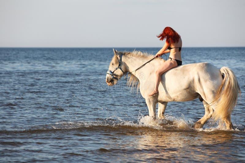 Nuoto della donna con il cavallo immagini stock libere da diritti