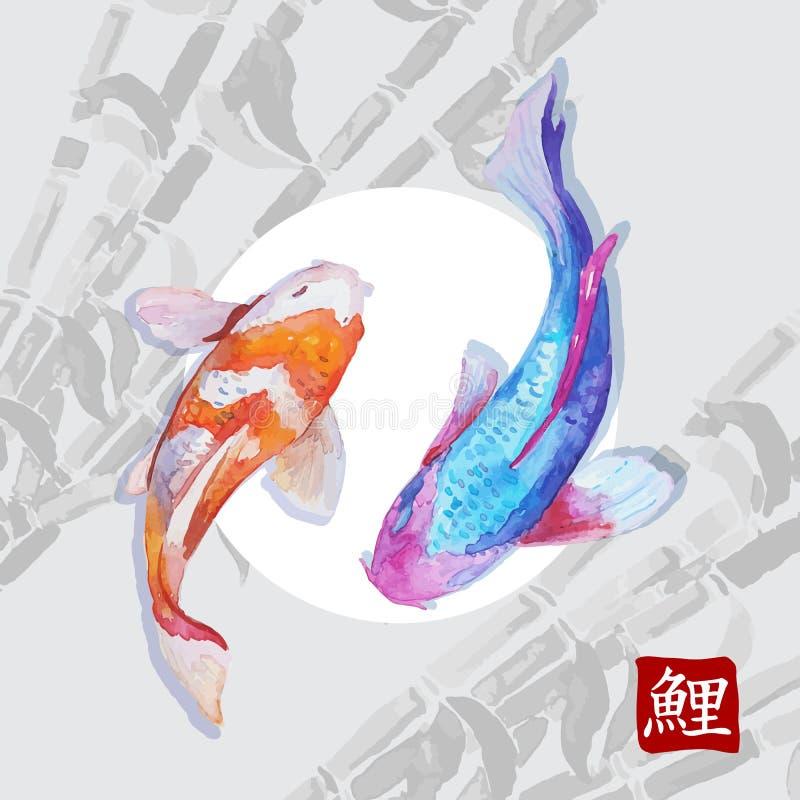 Nuoto giapponese di koi delle carpe dell'acquerello fotografia stock libera da diritti