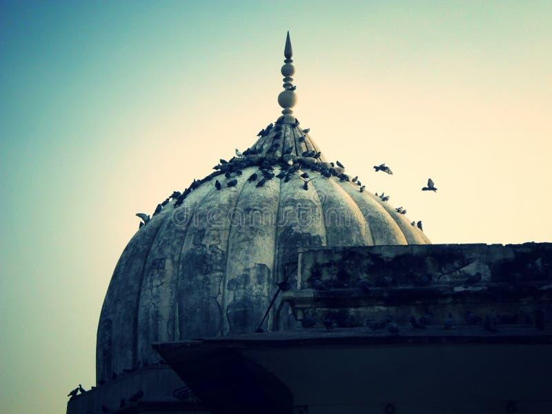 Nuova Delhi, India - gennaio 2019: Dentro la vista della fortificazione rossa, torre antica della pietra rossa nella fortezza i D immagini stock
