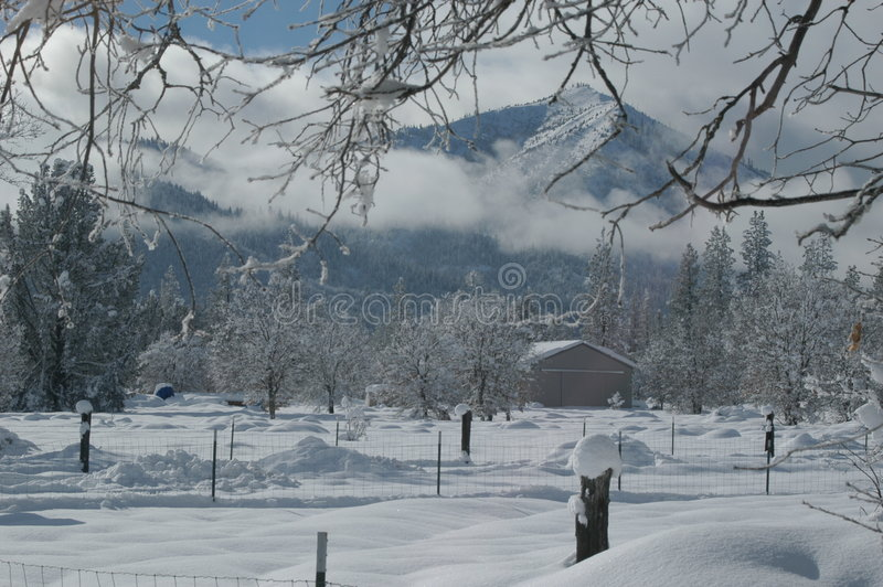 Nuova neve immagini stock