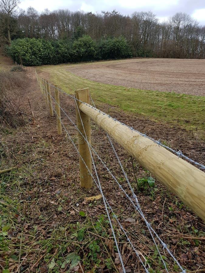 Nuova recinzione del legno del campo fotografia stock libera da diritti
