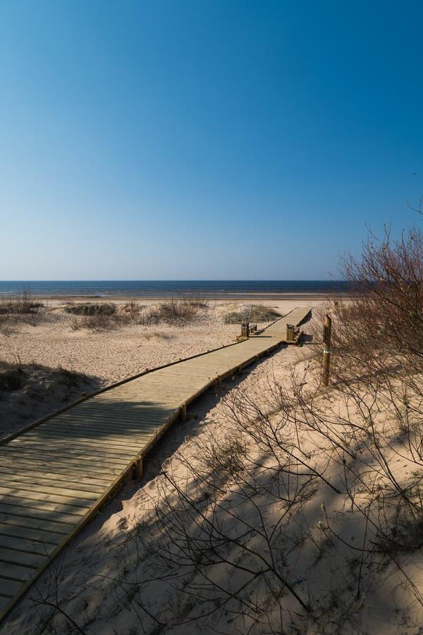 Nuova strada di legno che conduce dalla foresta della duna della spiaggia con i pini ed il bianco inviati al golfo del Mar Baltic fotografia stock libera da diritti