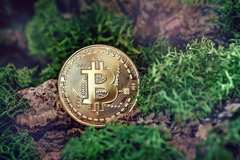 Nuova valuta cripta sotto forma di monete fotografia stock libera da diritti
