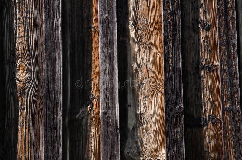 nuovi bordi di legno scuri con i fungino ed i rigonfiamenti di malattia fotografie stock libere da diritti