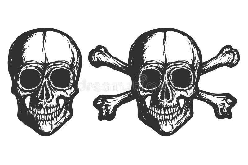 Nuovi crani - -2019 isolato royalty illustrazione gratis