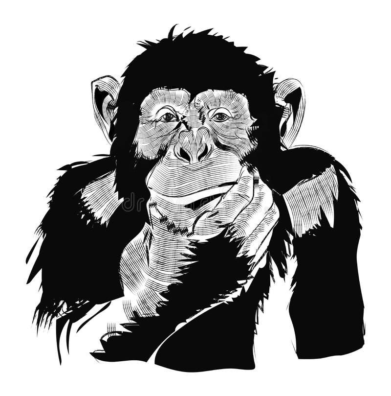 Nuovo anno della carta del manifesto di progettazione del disegno di vettore della scimmia royalty illustrazione gratis