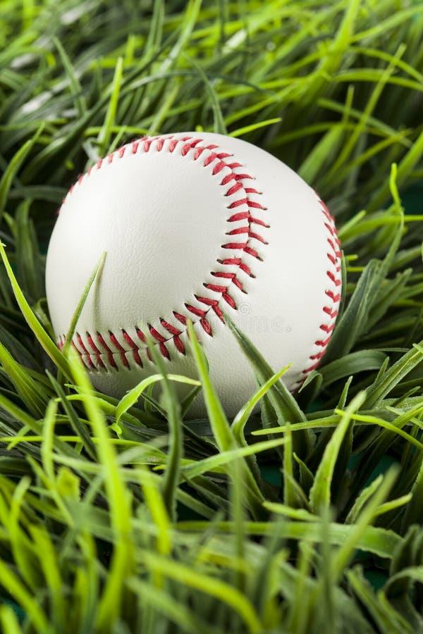 Nuovo baseball bianco in erba verde fotografie stock