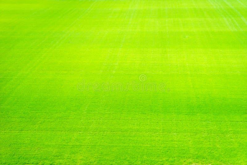 Nuovo campo da giuoco di nuova struttura naturale dell'erba verde fotografia stock