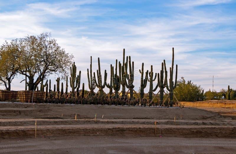 Nuovo cantiere in Arizona vicino a Phoenix immagine stock