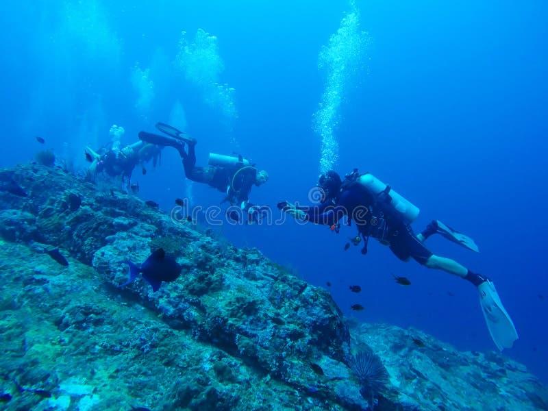 Nurka pływanie nad skałą zdjęcie royalty free