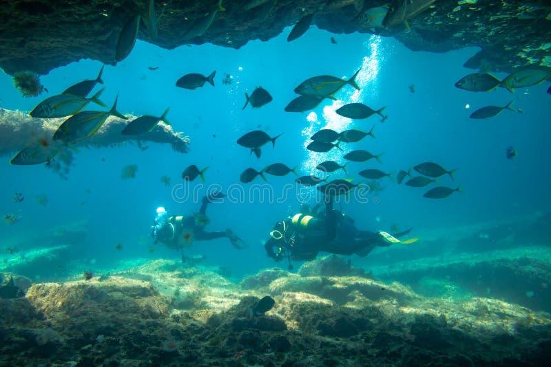 Nurkowie w immersi blisko rafy, Fuerteventura wyspy kanaryjska obrazy stock