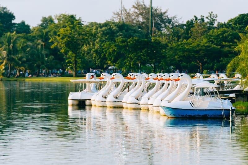 Nurkuje łodzie nad stawem w ranku z światłem słonecznym z drzewami w tle zdjęcia stock