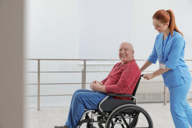 Nurse assisting senior man in wheelchair royalty free stock images