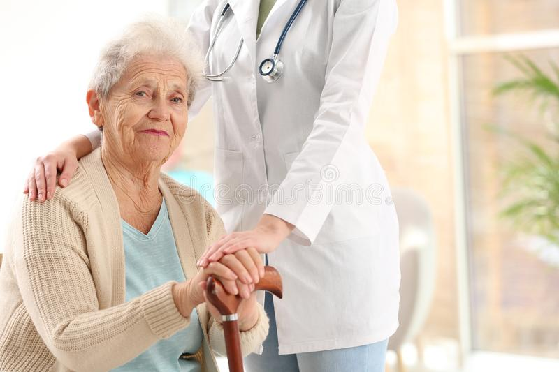Nurse assisting  woman with cane indoors. Space for text stock images