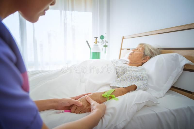 Nurse check pulse from hand of patients on the bed in the hospital room blur background, Intensive therapy concept royalty free stock images