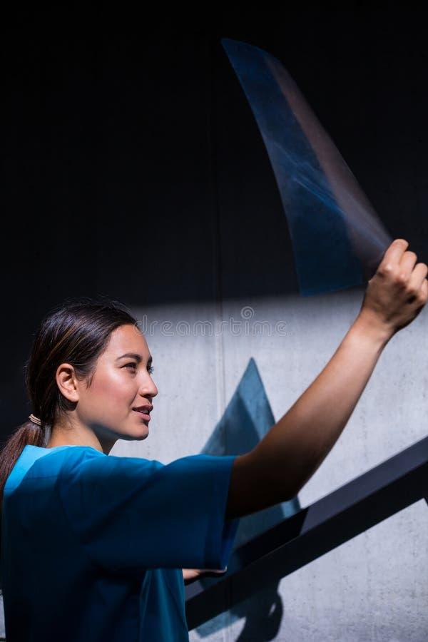 Nurse examining X-ray report. In hospital royalty free stock photo