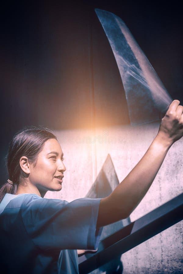 Nurse examining X-ray report. In hospital royalty free stock photography