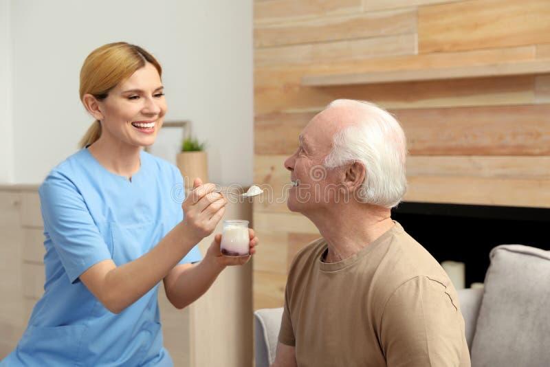 Nurse feeding elderly man with yogurt indoors royalty free stock image