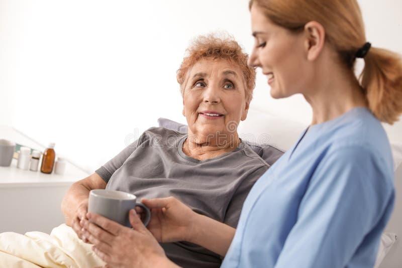 Nurse giving cup of tea to elderly woman. Medical assistance. Nurse giving cup of tea to elderly women indoors. Medical assistance stock images