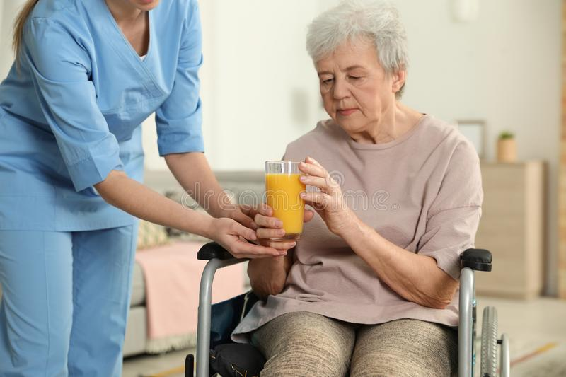 Nurse giving glass of juice to elderly woman in wheelchair. Assisting senior people stock image