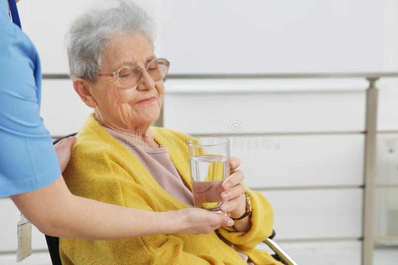 Nurse giving water to senior woman in wheelchair. Medical assisting royalty free stock image
