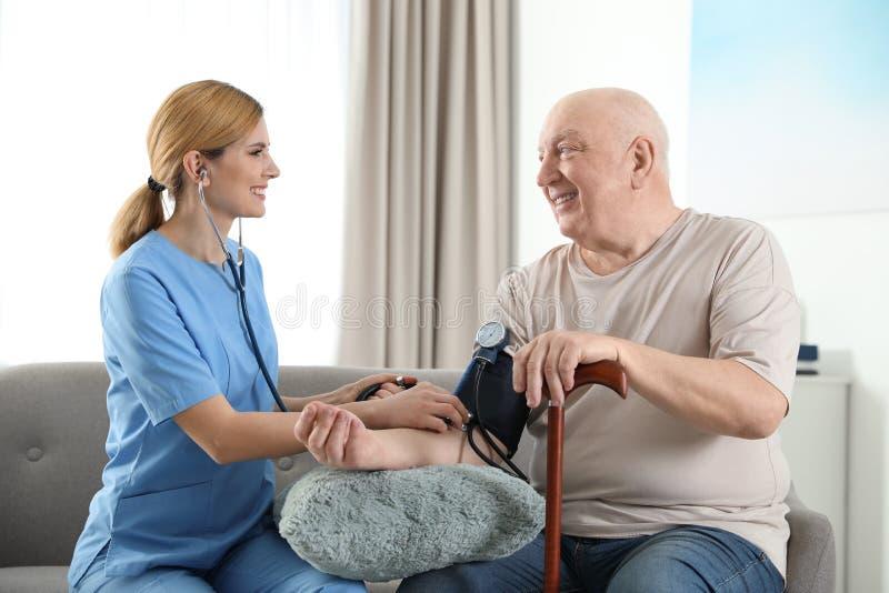 Nurse measuring blood pressure of elderly man indoors royalty free stock image
