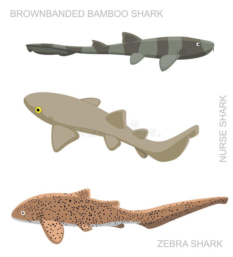 Nurse Shark Set Cartoon Vector Illustration stock illustration