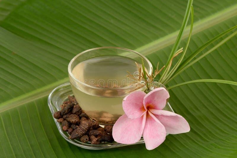 Nussgras, Coco bedecken Cyperus rotundus L mit Gras Tee für Gesundheit stockbild