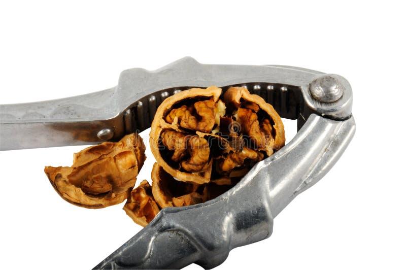 Nussknacker mit gebrochener Walnuss lizenzfreies stockbild