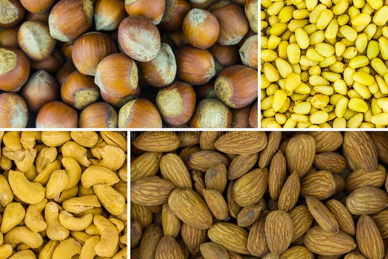 Nut assortment variety of delicious nutritious snack. Almond hazelnut cedar cashew nutritious lunch source of protein and vitamin royalty free stock image